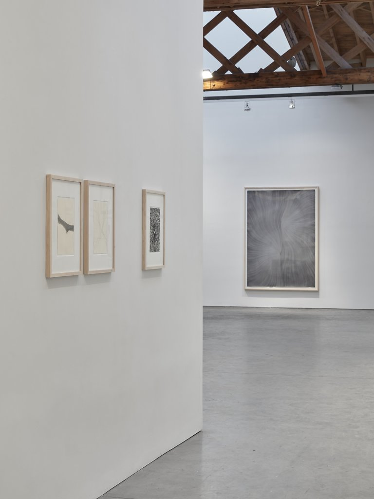 Thomas-Mueller-installation-view-Sean-Scully-Studio-New-York-2018-01-jpg.jpg